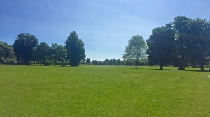 Knowle Village Green
